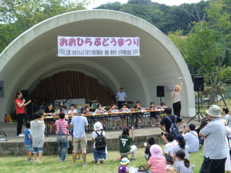 ohira-budou02