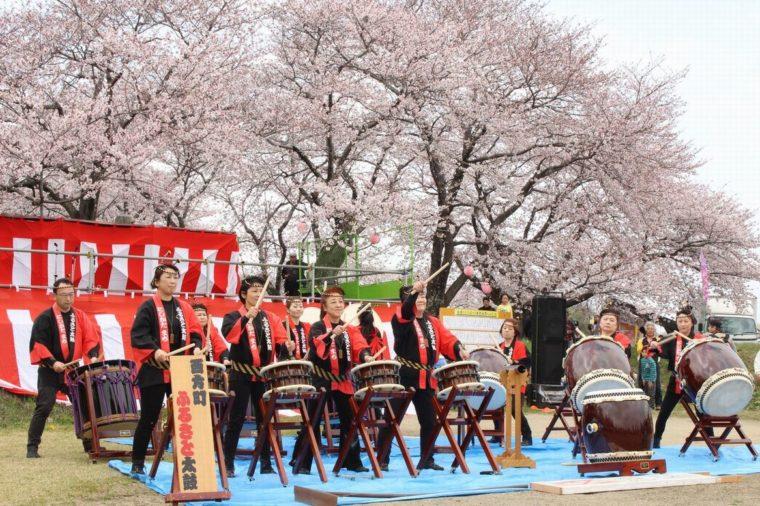 nishikata-sakura