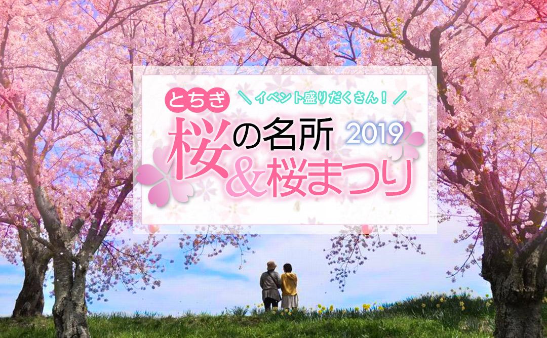 【2019】とちぎの桜を満喫しよう!